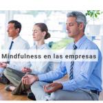 Empresas saludables, Mindfulness en las empresas