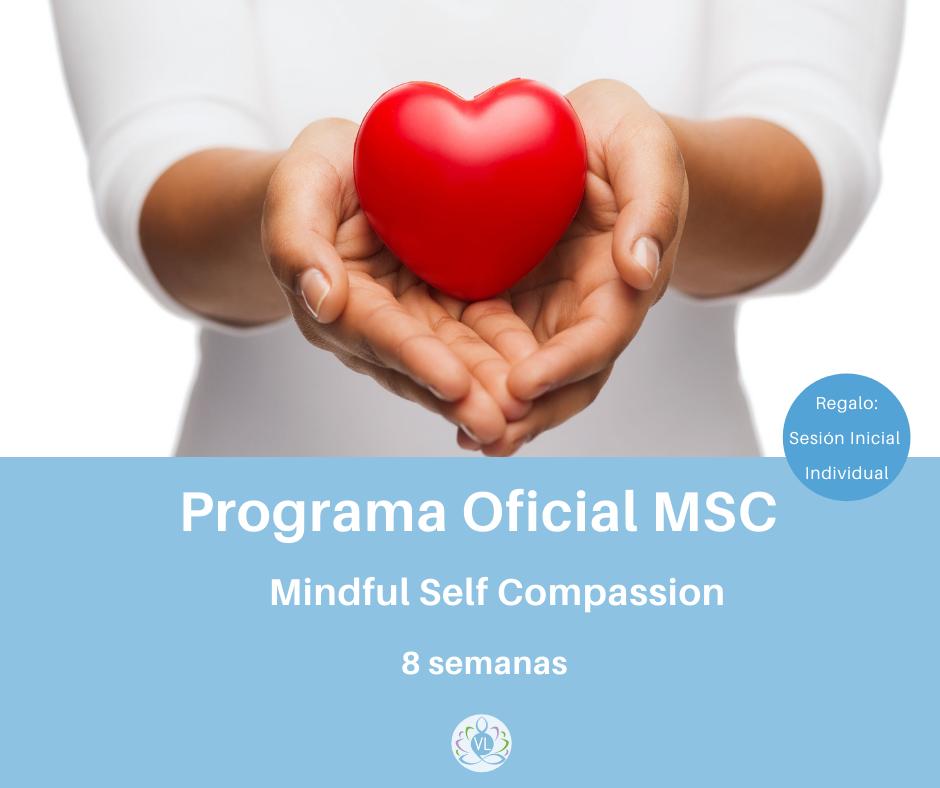 PROGRAMA-oficial-Mindfulness